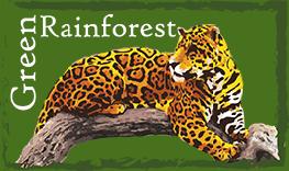 green rainforest org, panama